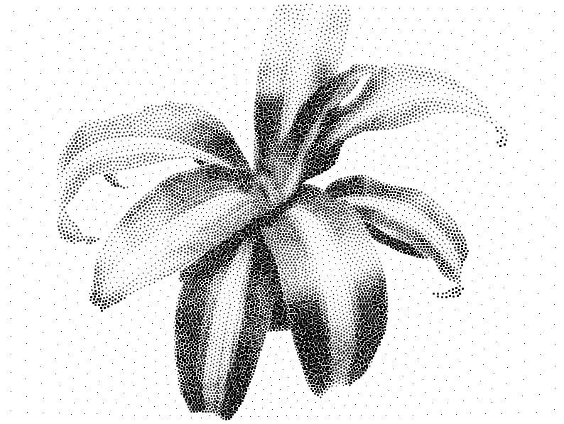 plant10kpath_0.png