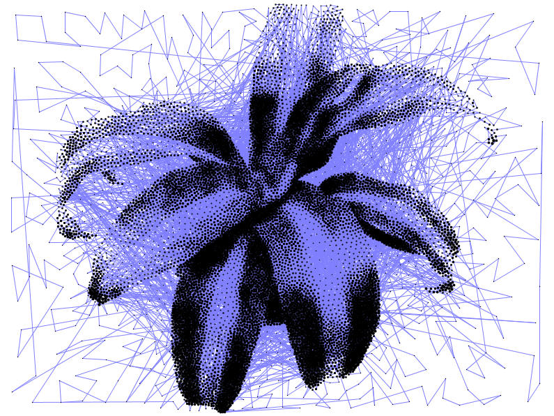 plant10kpath_1.jpg
